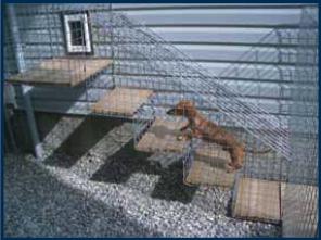 Doggie Digs Dog Doors Cat Doors Pet Doors For Sliding