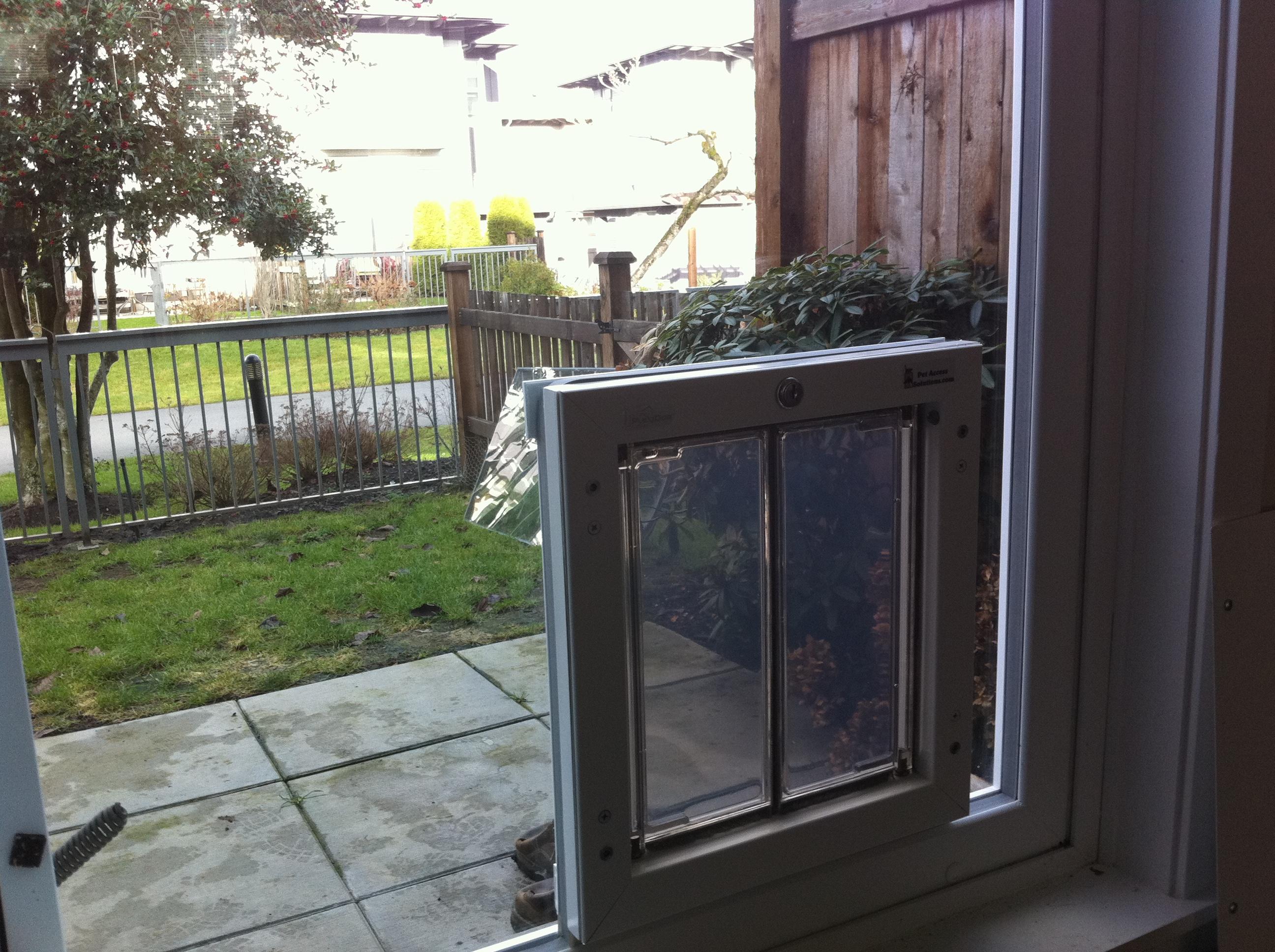 1936 #8C8F3C  Dog Doors Cat Doors Pet Doors For Sliding Glass Doors save image Sliding Doors Doggie Door 14572592