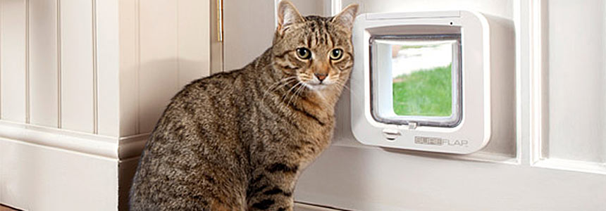 Dog Doors Sliding Glass patio Doors, Cat Doors, Doggie, Pet Doors ...